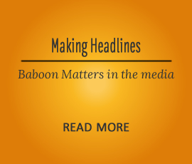 Baboon Matters in the Media